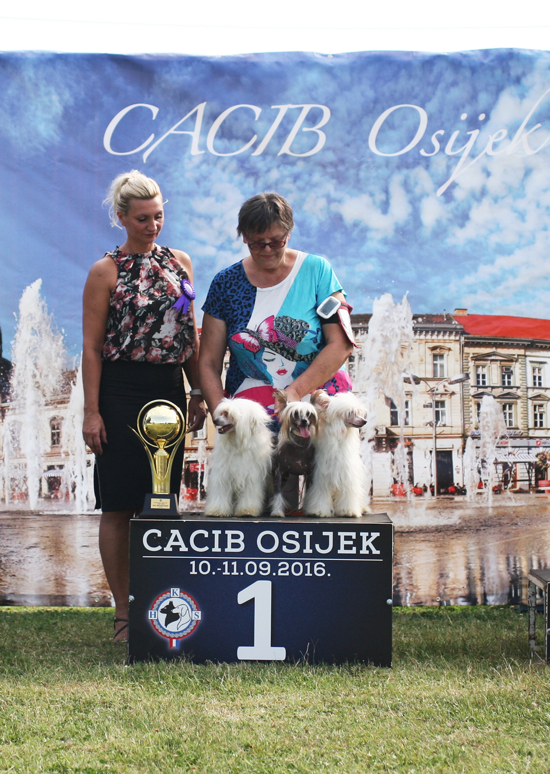 Best Breeders' Group - BIS IDS Osijek (Croatia), Sunday, 11 September 2016