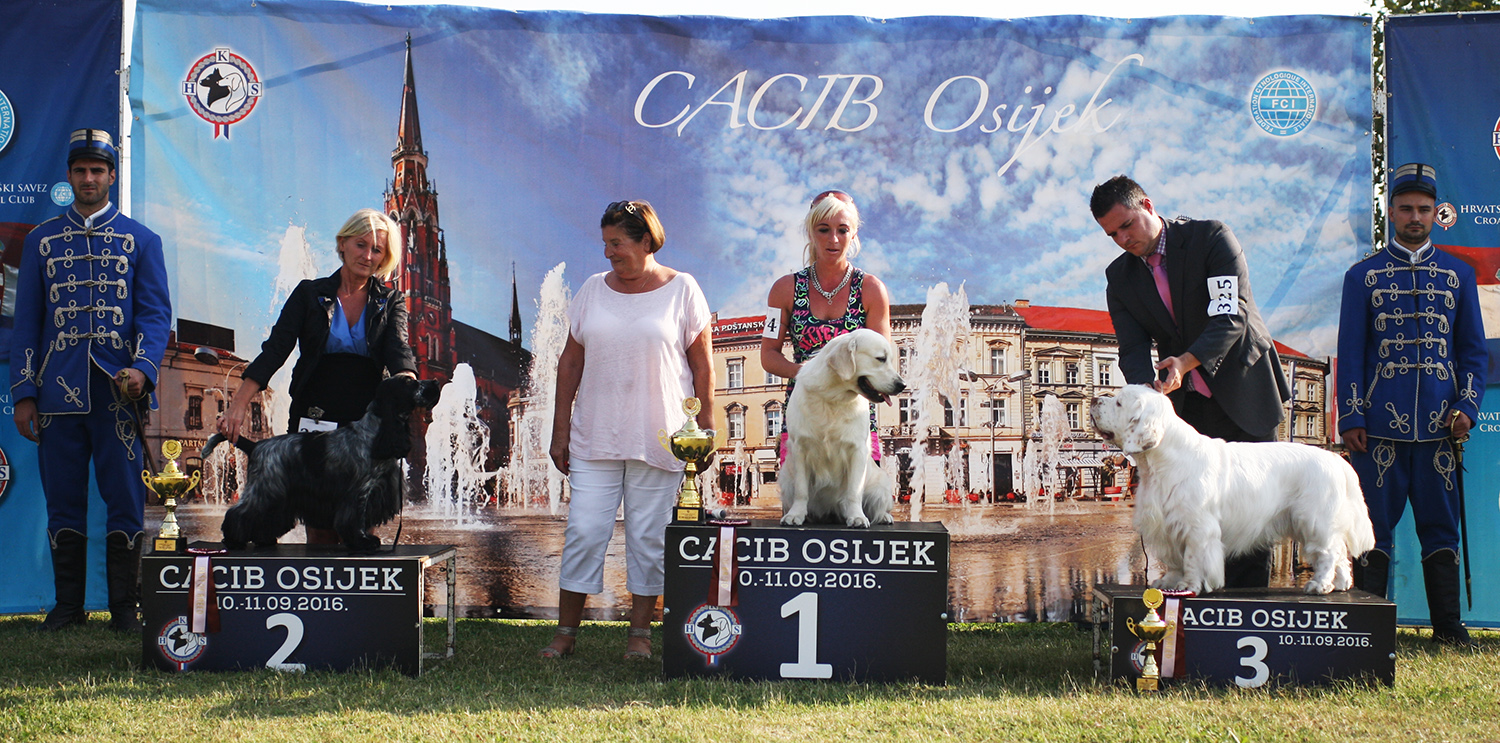 FCI group VIII - BIS IDS Osijek (Croatia), Sunday, 11 September 2016