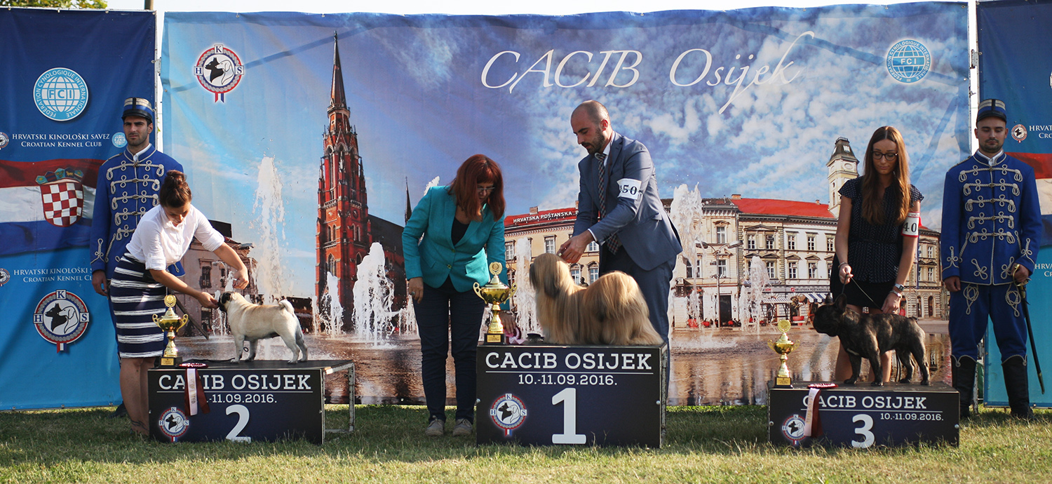 FCI group IX - BIS IDS Osijek (Croatia), Sunday, 11 September 2016