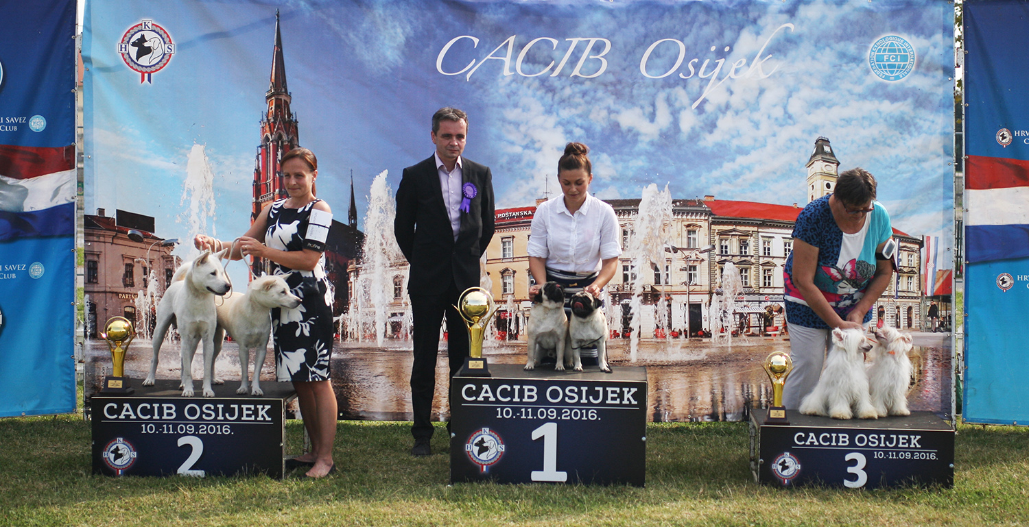 Best Brace - BIS IDS Osijek (Croatia), Sunday, 11 September 2016