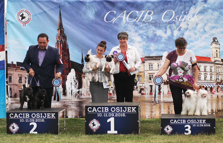 Best Brace - BIS IDS Osijek (Croatia), Saturday, 10 September 2016 (Photo)