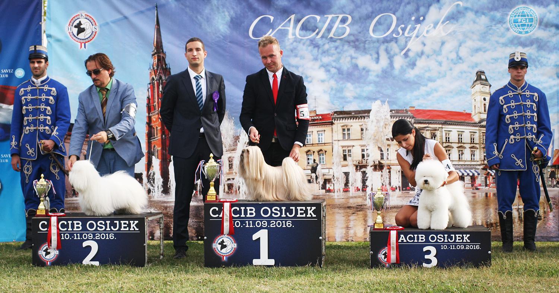 FCI group IX - BIS IDS Osijek (Croatia), Saturday, 10 September 2016 (Photo)