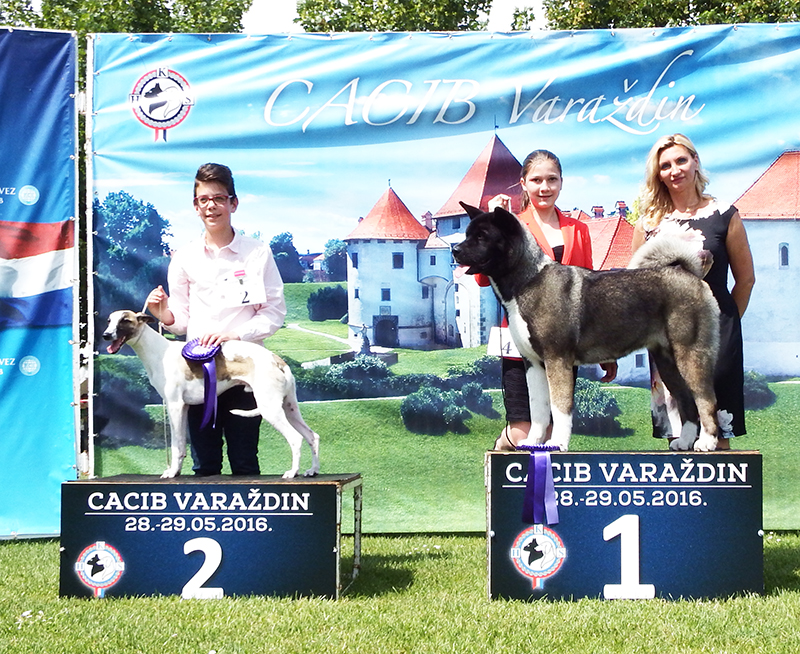 Best Junior Handler Younger Group - BIS CACIB Varaždin (Croatia), Sunday, 29 May 2016 (photo)