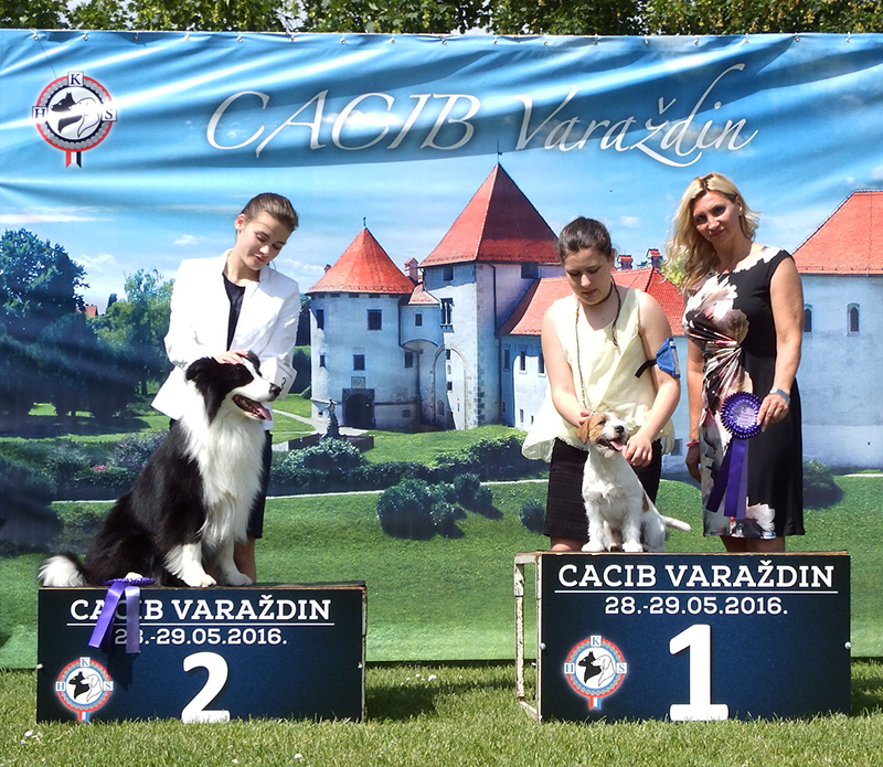 Best Junior Handler Older Group - BIS CACIB Varaždin (Croatia), Sunday, 29 May 2016 (photo)