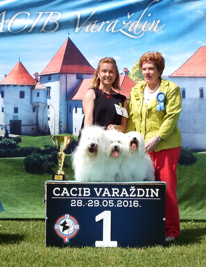 Best Breeders' Group - BIS CACIB Varaždin (Croatia), Sunday, 29 May 2016 (photo)