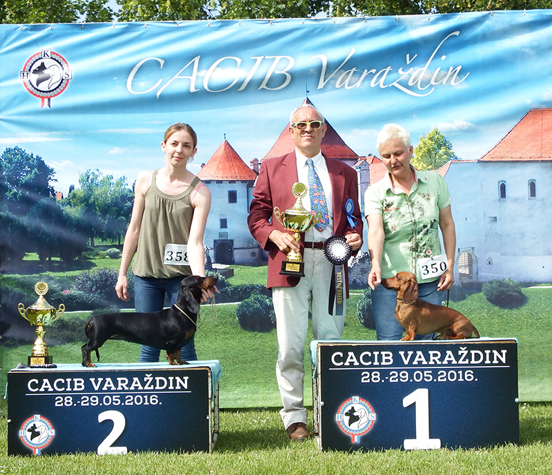 FCI Group IV - BIS CACIB Varaždin (Croatia), Sunday, 29 May 2016 (photo)