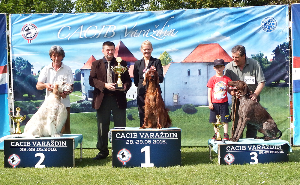 FCI Group VII - BIS CACIB Varaždin (Croatia), Sunday, 29 May 2016 (photo)