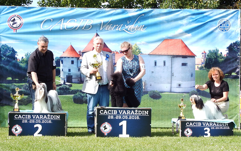 FCI Group IX - BIS CACIB Varaždin (Croatia), Sunday, 29 May 2016 (photo)