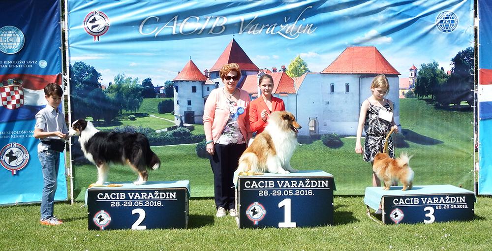 Лучший юный хэндлер младшая группа - BIS CACIB Вараждин (Хорватия), суббота, 28 мая 2016 года (фото)