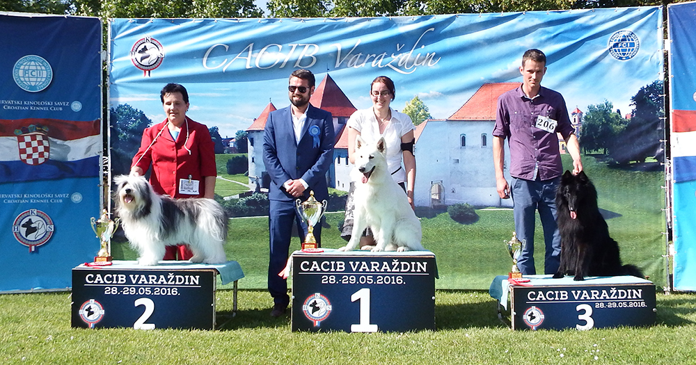 FCI Group I - BIS CACIB Varaždin (Croatia), Saturday, 28 May 2016 (photo)