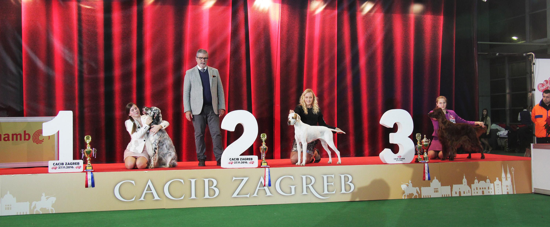 FCI group VII - BIS IDS Zagreb (Croatia), Sunday, 27 November 2016 (Photo)