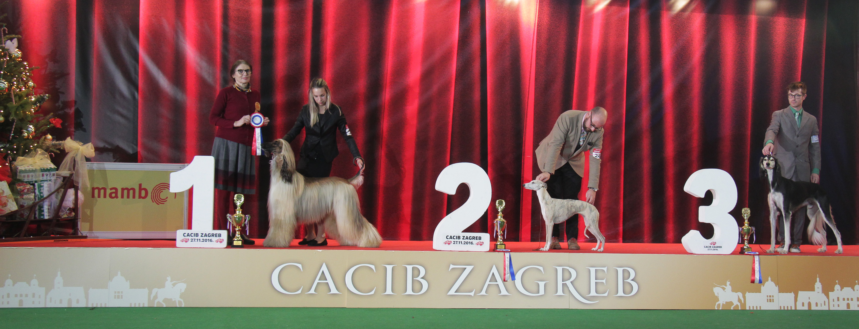 FCI group X - BIS IDS Zagreb (Croatia), Sunday, 27 November 2016 (Photo)