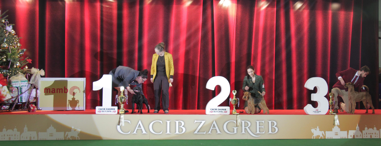 FCI group III - BIS IDS Zagreb (Croatia), Saturday, 26 November 2016
