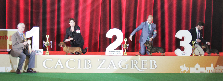 FCI group IV - BIS IDS Zagreb (Croatia), Saturday, 26 November 2016